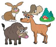 Forest animals collection 1. Illustration Stock Photography