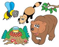 Forest animals collection 2. Vector illustration Stock Photos