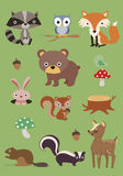 Forest animals collection 3 -  illustration Stock Image