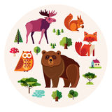 Forest animals collection Stock Photos