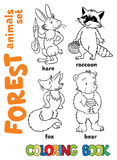 Forest animals coloring book Royalty Free Stock Photo