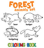 Forest animals coloring book Royalty Free Stock Photography