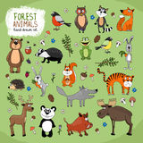 Forest Animals hand-drawn illustration. Forest Animals large set hand-drawn illustration with a wolf  fox  bears  panda  owl  raccoon  tiger  bunny  hedgehog Stock Images