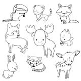 Forest animals outlines set for coloring. Forest animals outlines vector set with isolated cartooning deer moose raccoon rabbit squirrel fox wolf chipmunk Royalty Free Stock Images