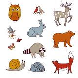 Forest animals set with bear, owl, birds, deer, hare, raccoon, snail, fox, and firefly.   Stock Images