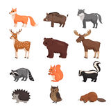 Forest animals set. Forest animals set in flat style isolated on white background. Vector illustration. Carton animals Stock Photography