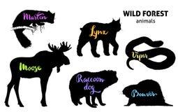 Forest Animals Set sauvage Orignaux, martre, lynx, chien de raton laveur, castor, vipère illustration stock