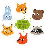 Forest animals vector. Animals of the forest. Animals in the forest on a white background. Snouts of animals. Stock Images