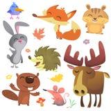Forest Animals Vector Illustration Beeldverhaalvogel, egel, bever, konijntjeskonijn, aardeekhoorn, vos, muis en Amerikaanse eland royalty-vrije illustratie