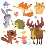 Forest Animals Vector Illustration Oiseau, hérisson, castor, lapin, tamia, renard, souris et orignaux de bande dessinée Illustration Libre de Droits