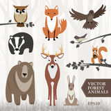 Forest animals Stock Image