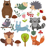 Forest animals. Royalty Free Stock Photos