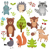 Forest animals. Royalty Free Stock Photo
