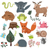 Forest animals. Royalty Free Stock Photography