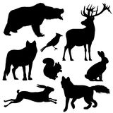 Forest animals vector silhouettes set Stock Photography