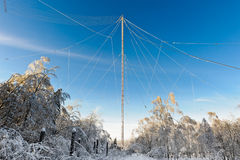 Forest and antenna Royalty Free Stock Photo