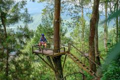 Forest area of Batu, Indonesia. Batu Malang, East Java, Indonesia - April 2018 : Area of Place name Omah Kayu, top hill in batu with tree house building by high stock image
