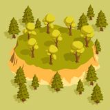 Forest area with trees and spruces and a slight elevation. Isometric 3d vector illustration stock illustration