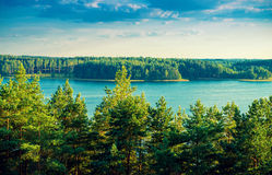 Forest around lake Royalty Free Stock Photography