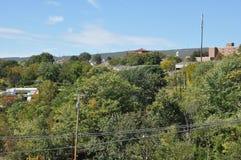 Forest around Scranton Stock Image