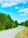 Forest asphalt road Royalty Free Stock Image