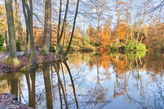 Forest in autumn colors with pond Stock Images