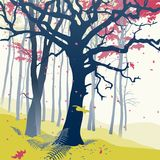 Forest in autumn. Royalty Free Stock Image