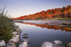 Forest during autumn at Isar in Munich Stock Photography
