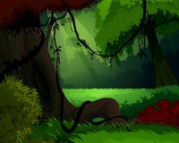 Forest background. Dark Dense Forest with sunset Illustration Royalty Free Stock Photos