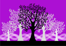 Forest Background. Illustrations Forest Background abstract design vector illustration