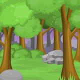 Forest Background con los árboles, la piedra y la hierba grandes Fotografía de archivo libre de regalías