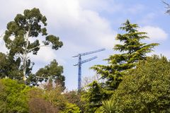 Forest on the background of cranes and construction. Nature and civilization. View of the tower crane through the park and stock photography