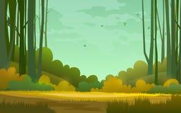 Forest background. illustration of woods in forest background. Sunny forest background,  illustration of woods in forest in sunlight background stock illustration