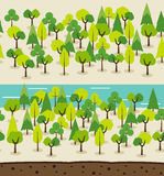 Forest background. Landscape seamless background. Forest background Royalty Free Stock Photo