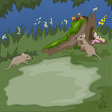 Forest background with mouses Royalty Free Stock Photos