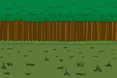 Forest Background spesso Fotografie Stock Libere da Diritti
