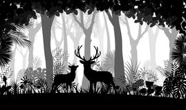 Forest background with wild deer of trees Royalty Free Stock Photography