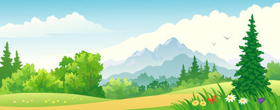 Forest banner Royalty Free Stock Photography