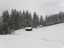 Forest in Bavarian Alps in winter. Forest in Bavarian Alps near Garmisch-Partenkirchen with wooden huts in snow and mist Royalty Free Stock Images
