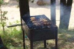 Forest BBQ. On the brazier royalty free stock photo