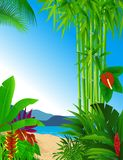 Forest beach background Royalty Free Stock Images
