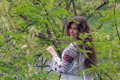Forest beauty. Portrait of a beautiful young girl in an embroidered shirt over green flowering tree Stock Photography