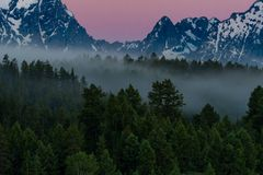 Forest Below Grand Tetons brumeux photographie stock