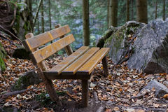 Forest Bench Stock Image