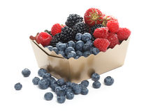 Forest berries Royalty Free Stock Photo