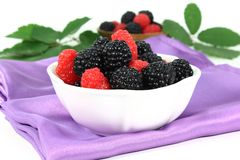 Forest berries Royalty Free Stock Photography