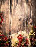 Forest berries on the Board. Royalty Free Stock Images