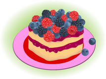 Forest berries cake vector Stock Images