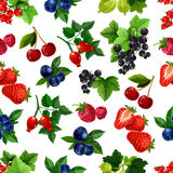 Forest berries and fruits vector seamless pattern Stock Photography