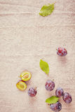 Forest Berries Isolated on Off White Cloth Stock Photography